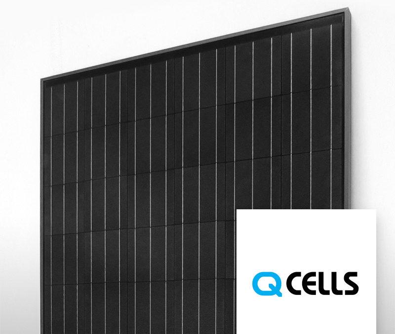 Module Q Cells Full Black 300Wc